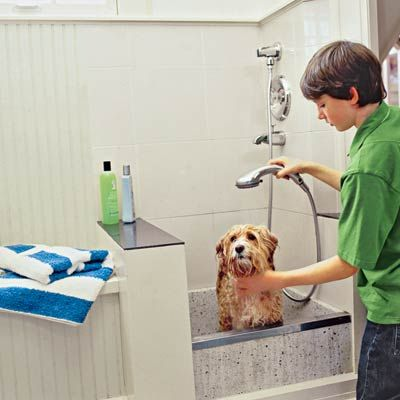 Great tips for how to design a dog washing station for your house--plus a few tips on bathing a dog.