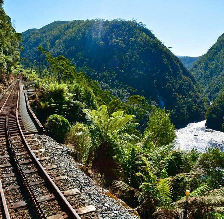 King river gorge #tasmania West coast