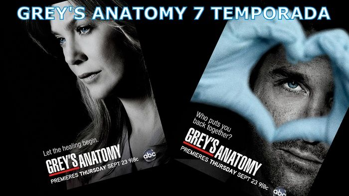 grey's anatomy online | online grey s anatomy 7ª temporada legendado a serie grey s anatomy ...