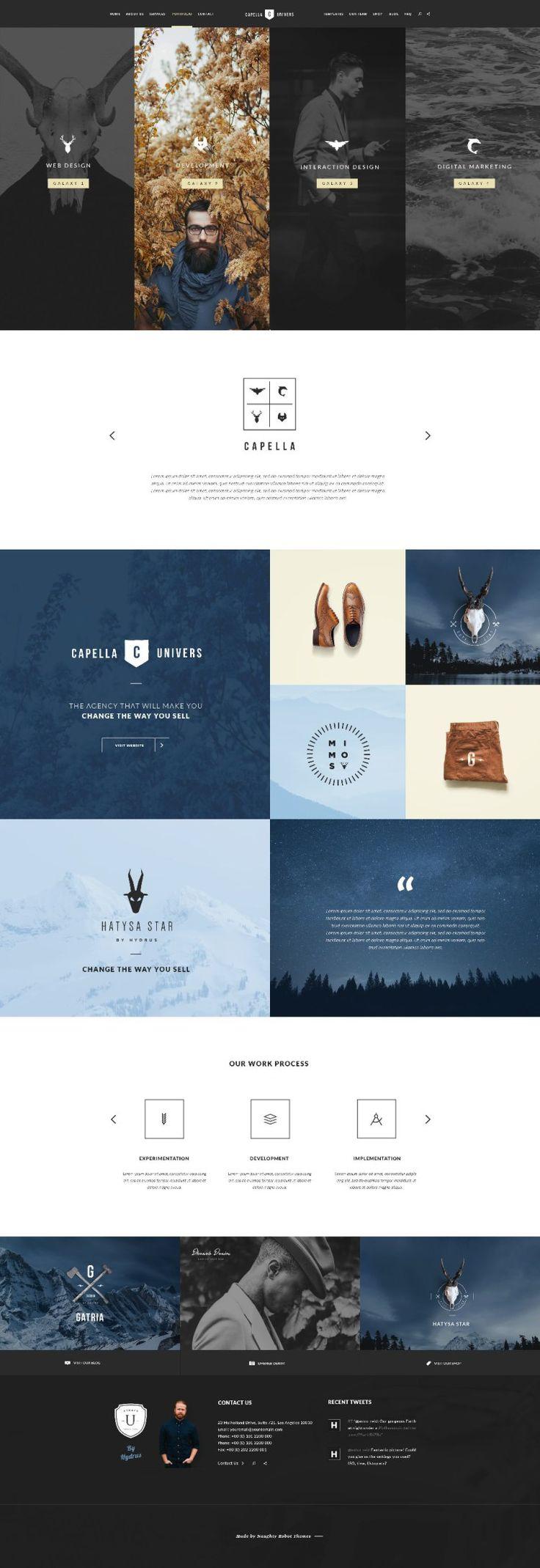 Hydrus Web Design Inspiration by naughtyrobot                                                                                                                                                                                 More