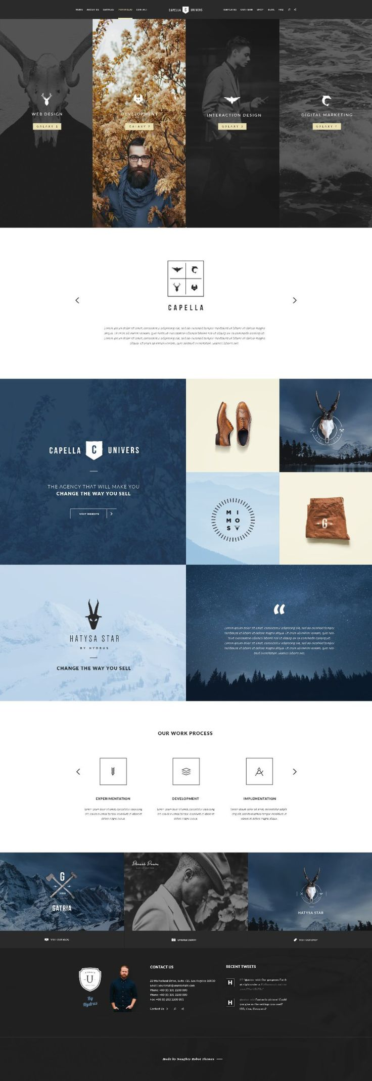 Hydrus Web Design Inspiration by naughtyrobot part 2
