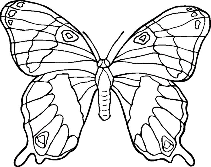 Butterfly Which Many Dislike The Woman Coloring Pages