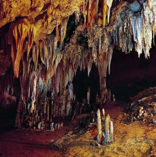Cavernas, Santander (Región Andina) , Colombia.