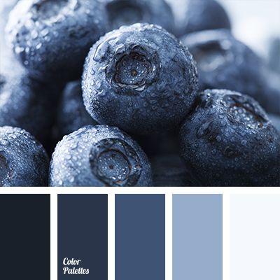 blueberry blue, color of blackberries, color solution for designers, colors of blackberry, colors of blueberry, dark blue color, dark-blue, deep blue, designer palettes, light blue, monochrome color palette,