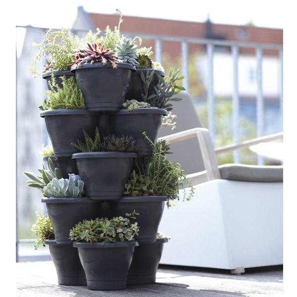 une fa on originale de planter fleurs potager et plantes aromatiques dans ces 5 pots tr fle ce. Black Bedroom Furniture Sets. Home Design Ideas