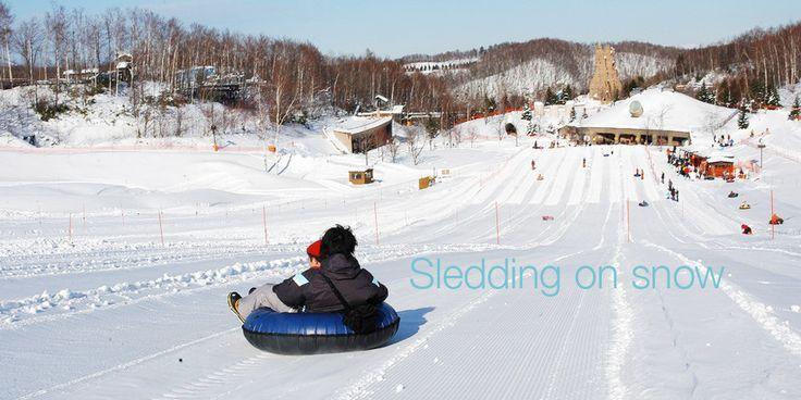 冬の札幌旅行といえば雪遊び。大人も子供も楽しめる | 北海道・札幌観光
