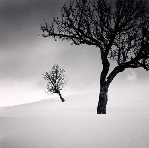 tell me: by Ebru Sidar #Photography #Nature #Scenery