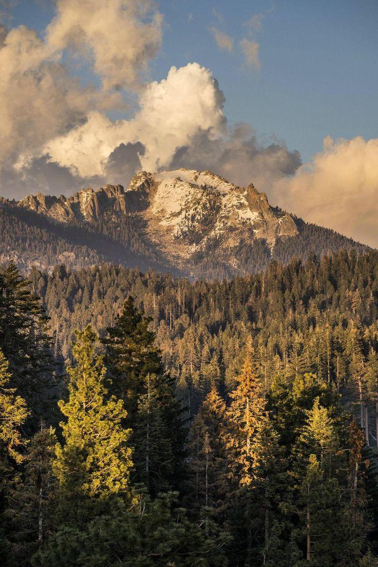 20 best Visalia. Ca 559!!.. images on Pinterest | Visalia california ...