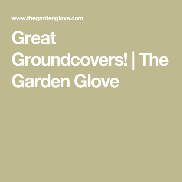 Best 20 Gardening gloves ideas on Pinterest Garden