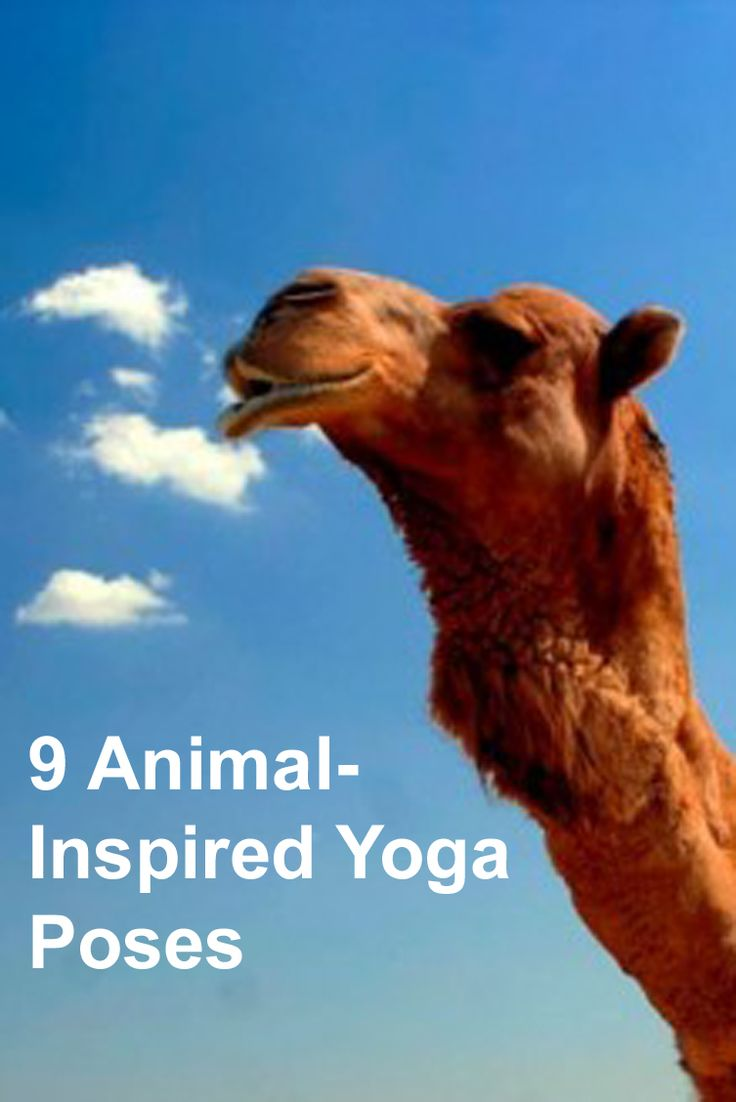 Check out these animal-inspired poses to add to your yoga routine. #yoga #health #fitness