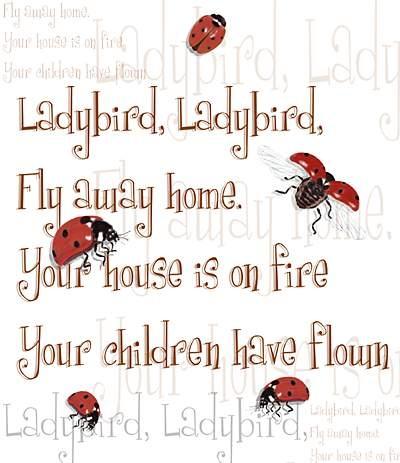 ladybird ladybird nursery rhyme -