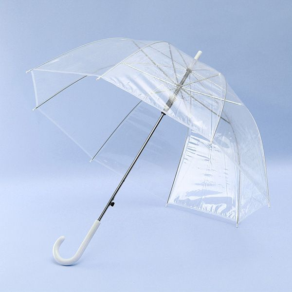 Clear Dome See Through Long Handle Transparent Umbrella