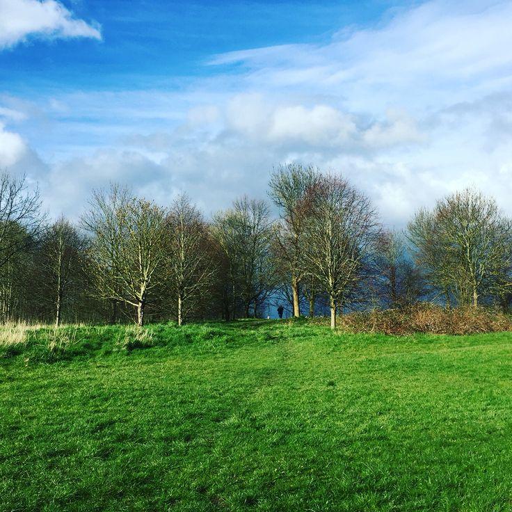Stormy summer skies and vivid lush green at Lloyd Park near Croydon