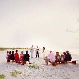Website Full Of Small Wedding Ideas