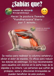 Trucos y poses de yoga Yoga Kundalini, Yoga Meditation, Fitness Del Yoga, Health Fitness, Yoga For Seniors, Yoga World, Yoga Anatomy, Yoga Mantras, Relaxing Yoga