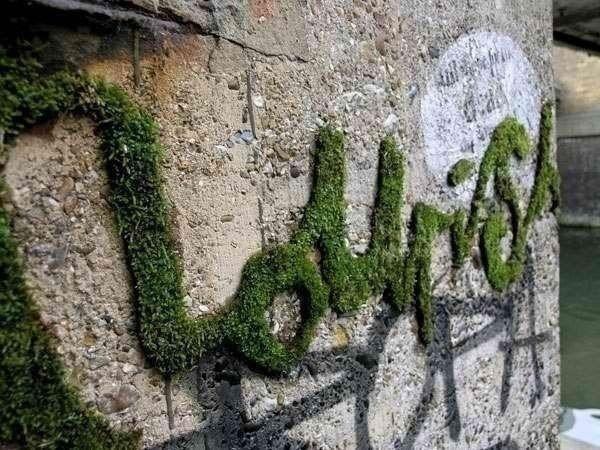 Мох. Живые декоративные надписи