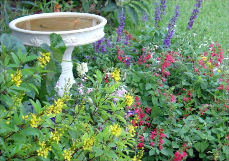 Butterfly Garden Butterfly Garden Ideas Pinterest 640 x 480