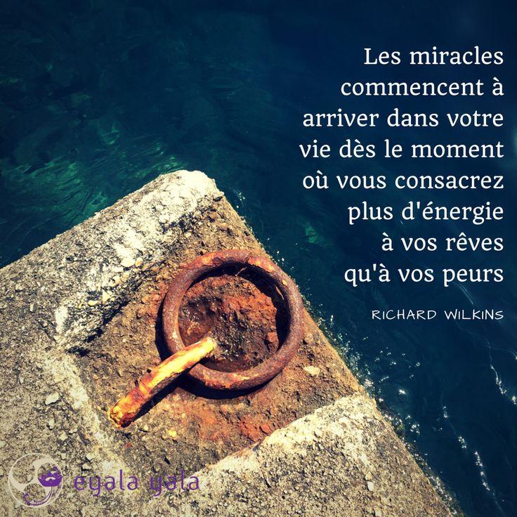 Les miracles commencent à arriver dans votre vie dès le moment où vous consacrez plus d'énergie à vos rêves qu'à vos peurs - Richard Wilkins