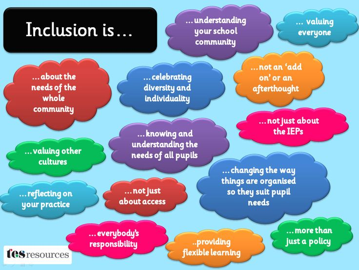 A presentation and poster explaining what inclusion is/should be in the classroom or school environment. This is full of simplified statements and could be expanded upon for awareness or staff training purposes.