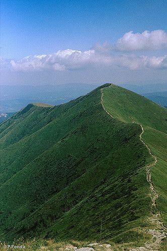 Slovakia, Malá Fatra Mts. | mountain ridge trail - Steny (literally the Walls), Malá Fatra National Park / hrebeňovka Krivánskej Malej Fatry. Photo by Peter Fenda