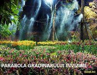 diane.ro: Parabola gradinarului invizibil | Intre credinta s...
