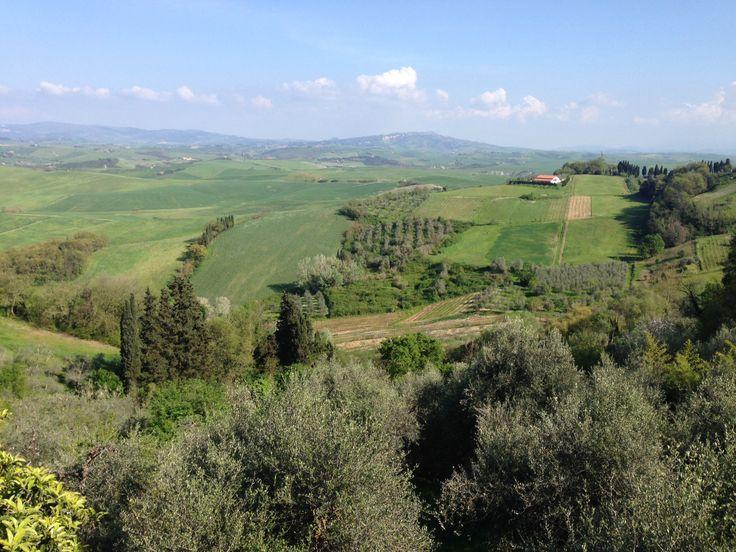 Lajatico view