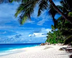 BeachesDestinations, Favorite Places, Dreams, Beach Beach, Places I D, Beach Mimshaug, Honeymoons, Beach Vacations, Beautiful Beach