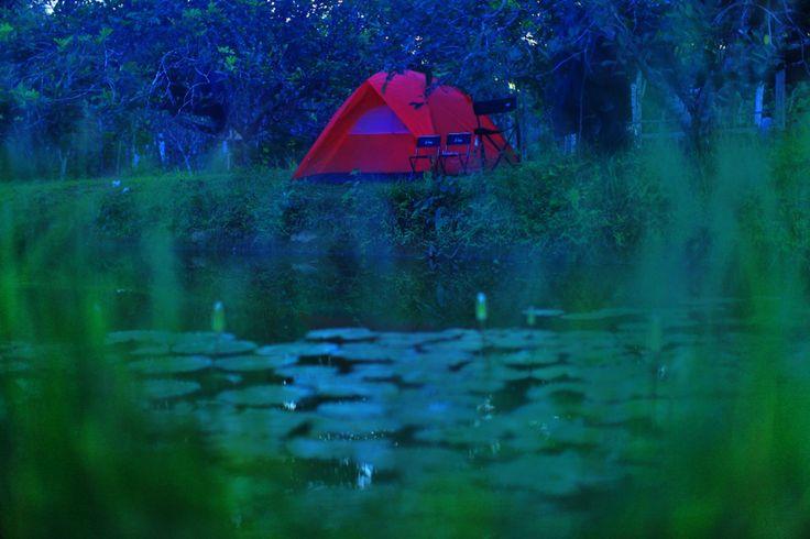 Camping di Kebun Konda saat Mudik di Kendari, Sulawesi Tenggara, Indonesia