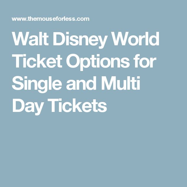 Walt Disney World Ticket Options for Single and Multi Day Tickets