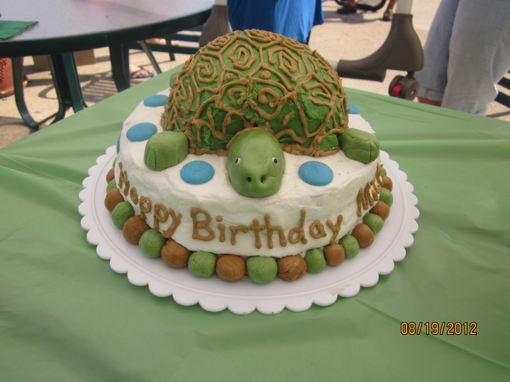 17 best ideas about Turtle Birthday Cakes on Pinterest ...