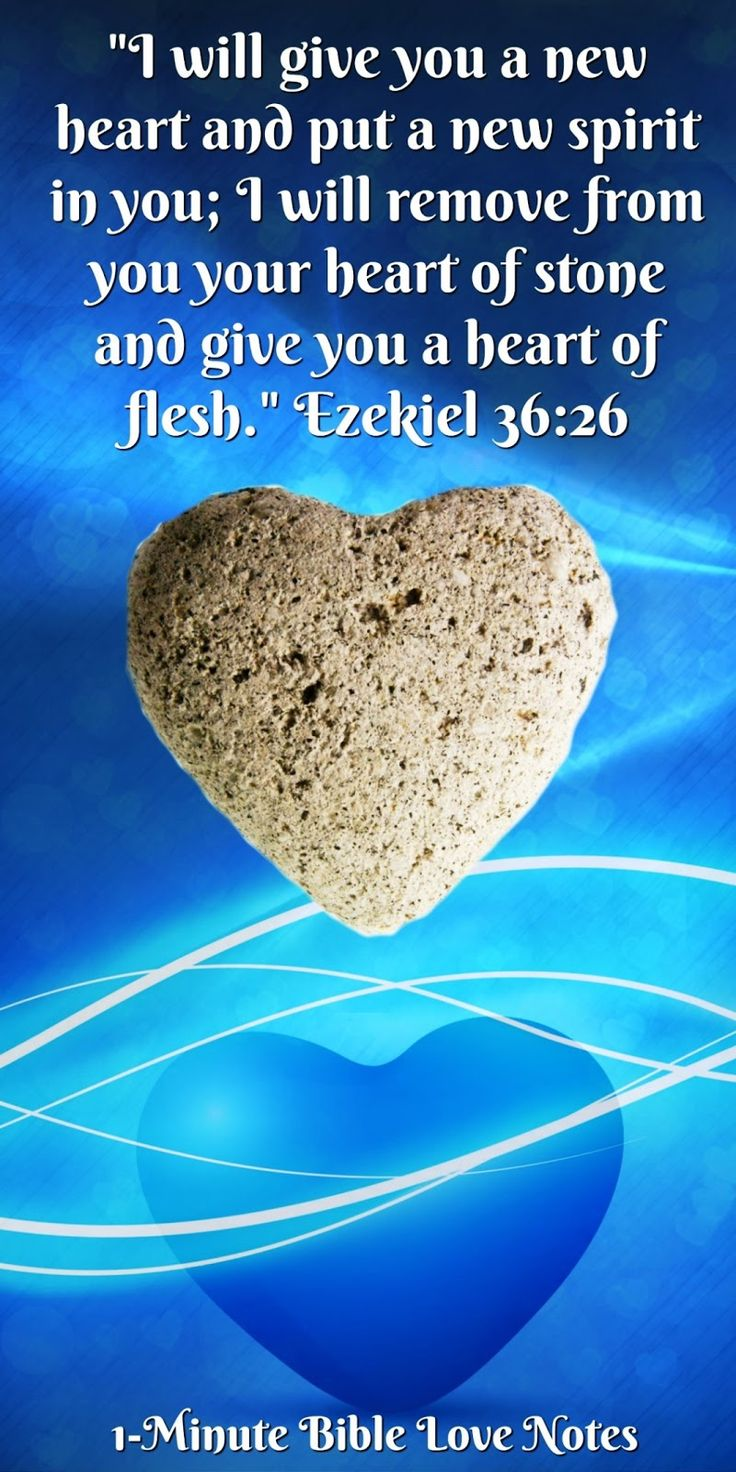 God Does Heart Transplants - Ezekiel 36:26. This 1-minute devotion will bless you when you realize what God has written on your heart ♥