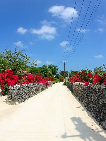 Taketomijima  ,Okinawa