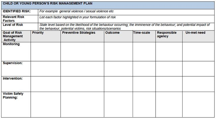 templates of risk management action plan - Google Search