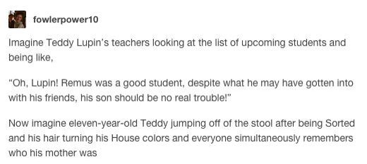 "Headcanon: Imagine Teddy Lupin's teachers looking at the list of upcoming students and being like, ""Oh, Lupin! Remus was a good student, despite what he may have gotten into with his friends, his son should be no real trouble"" now imagine eleven-year-old Teddy jumping off of the stool after being sorted and his hair turning his House colors and everyone simultaneously remembers who his mother was"