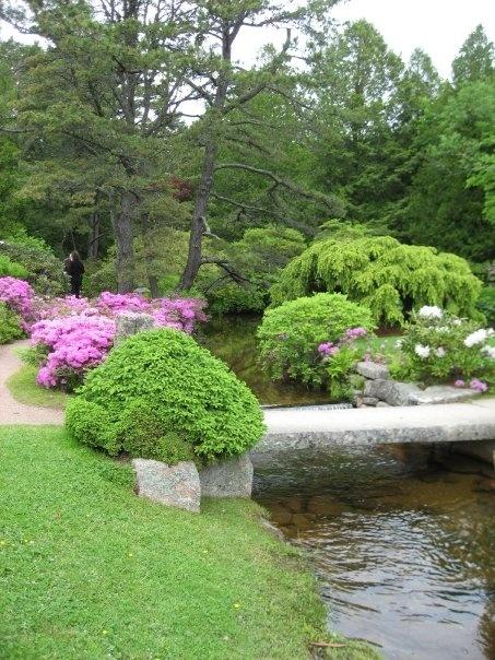 Asticou Gardens, Northeast Harbor