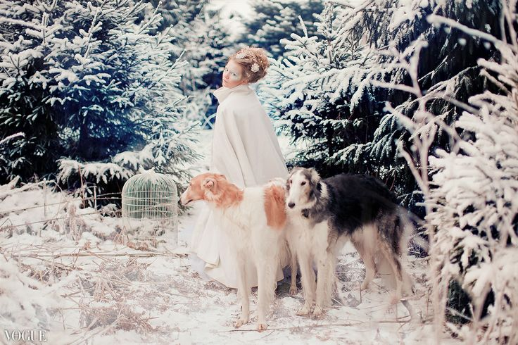 ideas for winter children photography. snowqueen. make up, dogs.