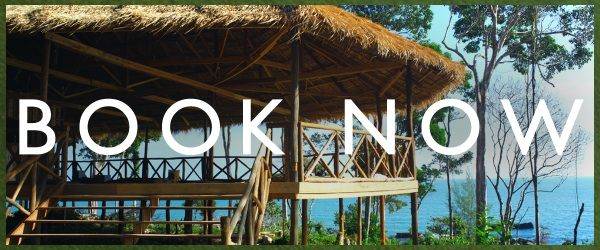 Monkey Maya - Ream National Park. Just 45 minutes from Sihanoukville lie untouched beaches and protected jungle. Bungalows, Dorm, Bar & Restaurant  (Deluxe Bungalows $45 per night. Dorm beds $8 per night. Book via Hostelworld.com for specials and to avoid disappointment.)