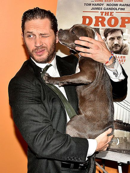 Stars And Their Pets Tom Hardy Cute Costar Hardy Gets