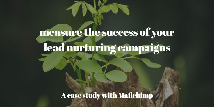 In this post we define KPIs and offer a way to measure the success of our lead nurturing campaigns running on Mailchimp.