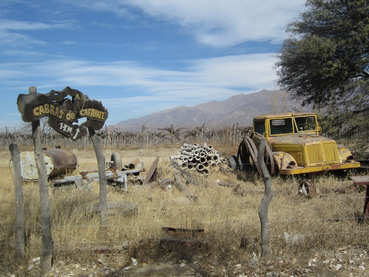 Landscapes around the village of Cafayate, north Argentina's wine region and answer to Mendoza.