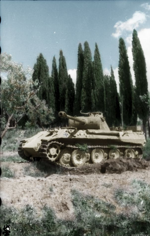 """1944 Italy, in Florenz/Ravenna.Panzer V """"Panther""""   driving off-road for the camera."""