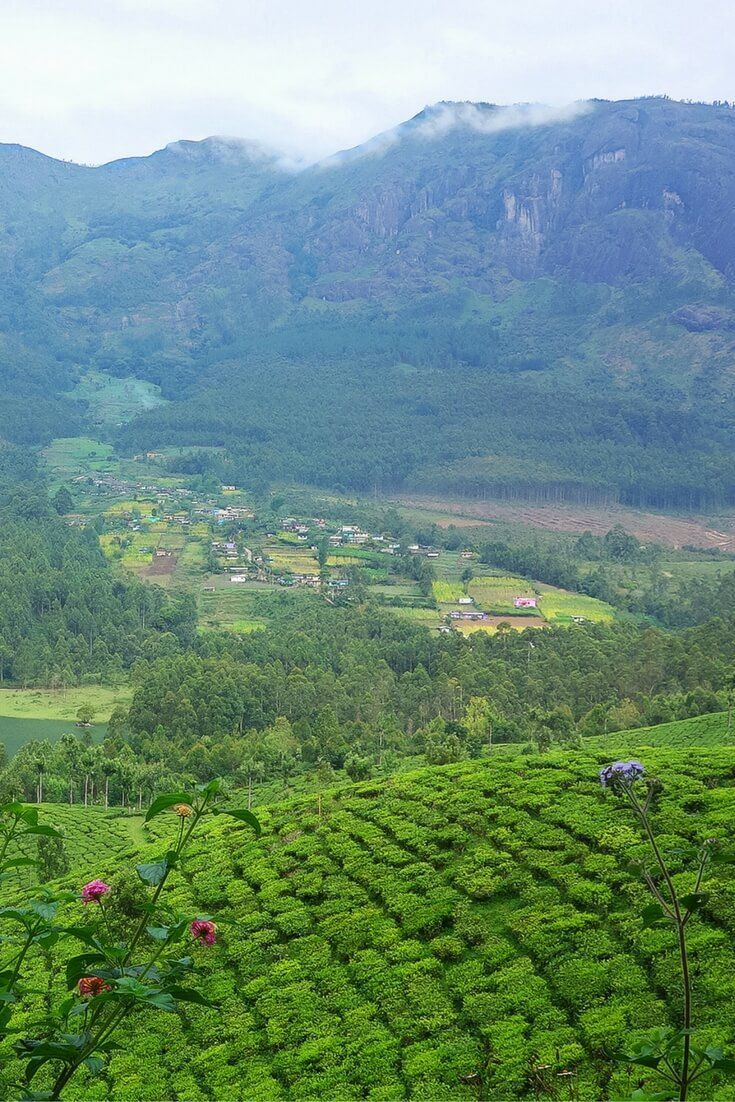 India travel: 10 places to visit in South India across the states of Kerala, Karnataka and Tamil Nadu, including popular and off the beaten destinations || Photo: Munnar