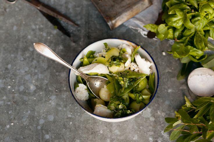 Den här salladen är mild och nära på blommig i smaken, och passar utmärkt till alla måltider. Sa vi att den är superenkel också? Bra.
