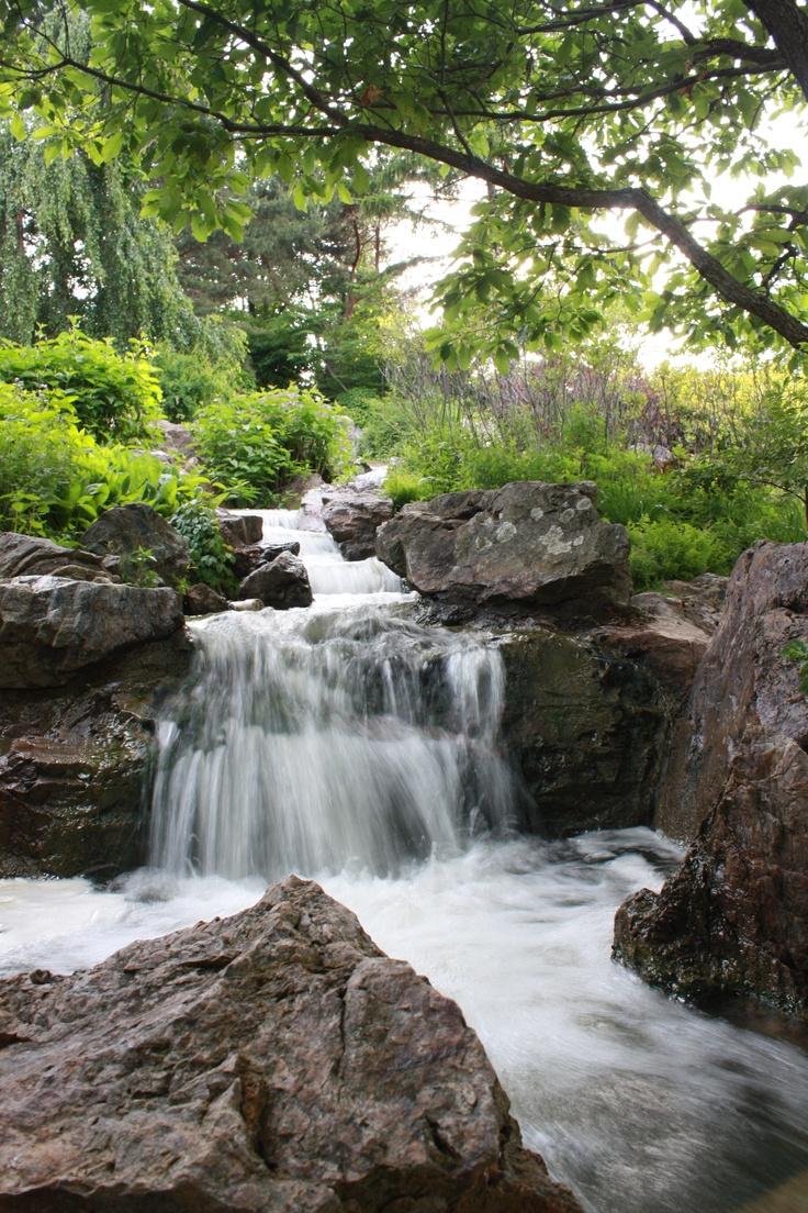 79 best chicago botanic garden images on pinterest botanical