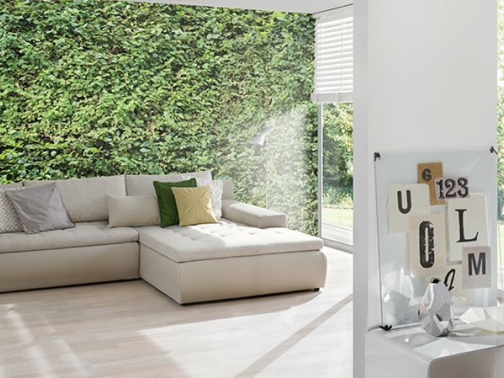 die besten 25 bl tter tapeten ideen auf pinterest afrikanisches veilchen h kelnkragenmuster. Black Bedroom Furniture Sets. Home Design Ideas