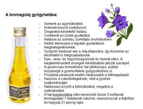 lenmagolaj1