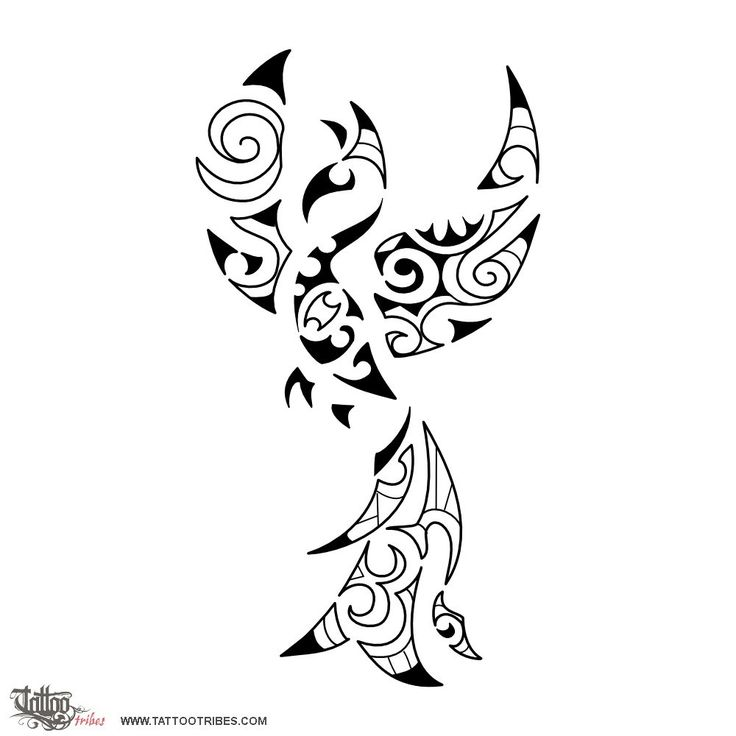 Small phoenix. Rebirth. This small Maori styled phoenix was prepared for Giuditta and it incorporates an important date as a maorigram. The phoenix is a mythological creature who dies in fire and is born again from its own ashes every time; it symbolizes eternity and rebirth. http://www.tattootribes.com/index.php?newlang=English&idinfo=7007