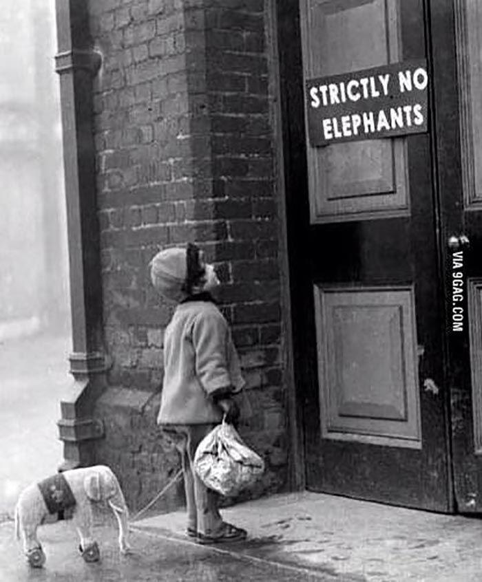 Strictly No Elephants ... - PHUNRISE