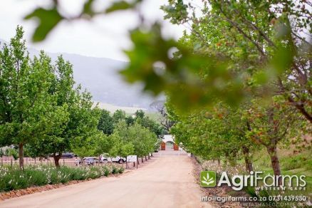 Wedding guest venue wine and fruit farm for sale around Wellington in the Cape Winelands district of the Western Cape http://www.agrifarms.co.za/cape-winelands/wellington/agf0249
