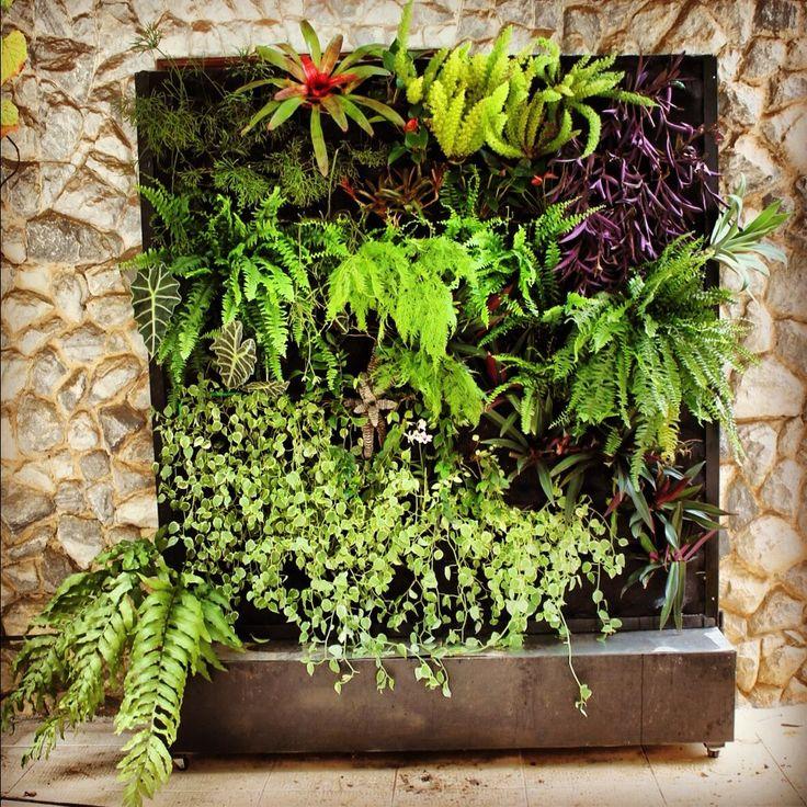 25+ Best Ideas About Indoor Vertical Gardens On Pinterest